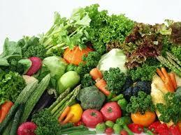 voeding-vechtsport